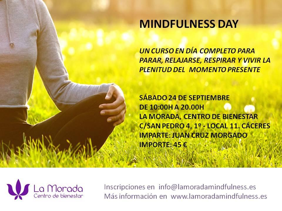 Cartel Mindfulness Day