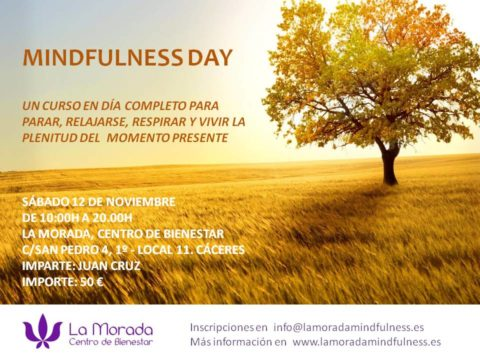 mindfulness-day